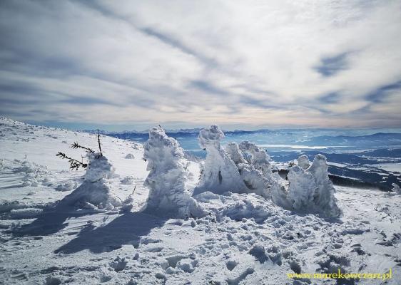 babia-góra-II-37