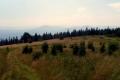 kolorowa polana szczytowa na Ćwilinie