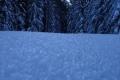 grudniowy śnieg