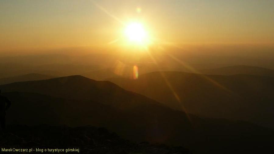 zachodzik z Babiej Góry