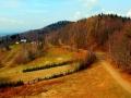 brzanka-liwocz (3)
