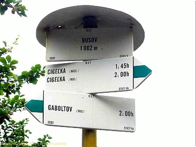 na szczycie Busova