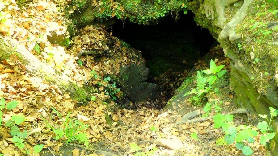 wejście do jednej z jaskiń Na Wierzchowinie