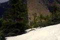 spojrzenie w dół w kierunku Bobrowieckiej przełęczy