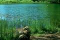 górne jeziorko Duszatyńskie