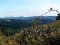 panorama Gór Lewockich