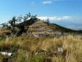 partie szczytowe Czarnej Góry