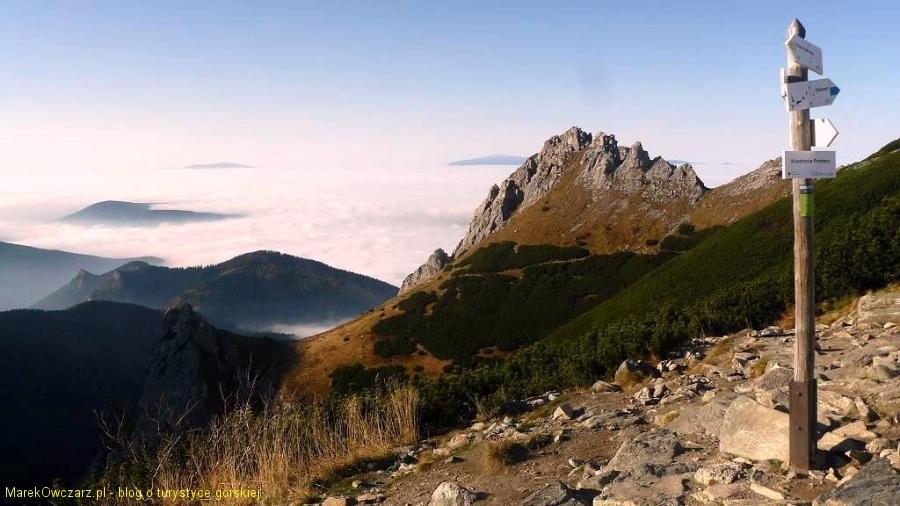 widok z Przełęczy Kondrackiej na siodło w Giewoncie