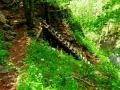 jaskinia i roklina (41)