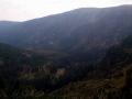 dolina łaby (10)