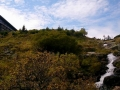 dolina łaby (14)