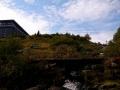 dolina łaby (15)