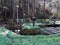 dolina szalajki (10)