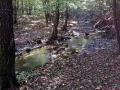 park krajobrazowy chełmy