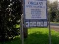 organy wielisławskie