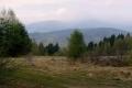 widok z Czarnych Garbów na Lubowiańską Wierchowinę