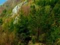 haligowskie skały (10)