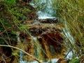 haligowskie skały (15)