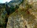 haligowskie skały (38)