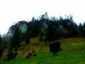 haligowskie skały (6)