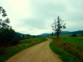 jaworzyna-rotunda (23)