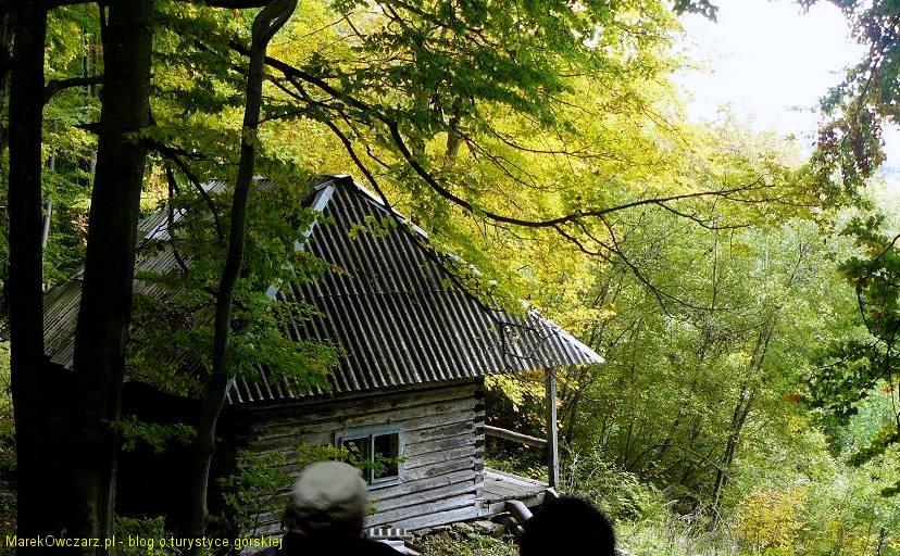 chatka przy zejściu z przełeczy Beskid Żydowski do Serbina