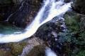 Niewcyrski potok