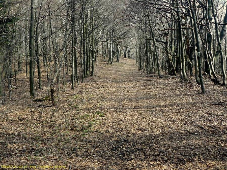 beskidzka ścieżka