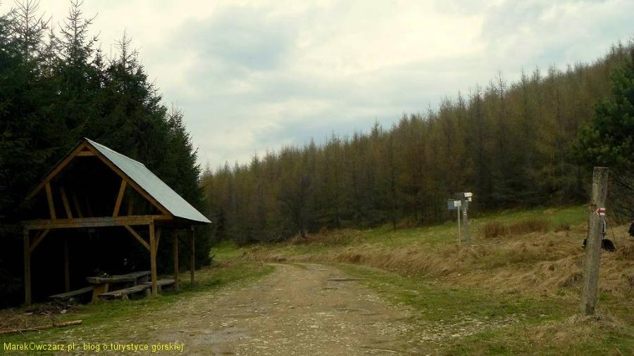 na przełęczy Wysowskiej