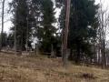 stary cmentarz w Wojkowej