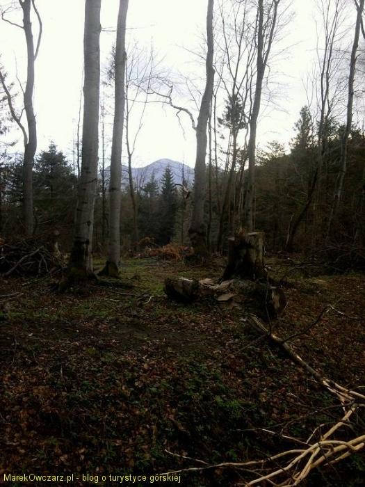widok na Busov - kulminacje Beskidu Niskiego na Słowacji