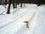 lackowa zima 2013
