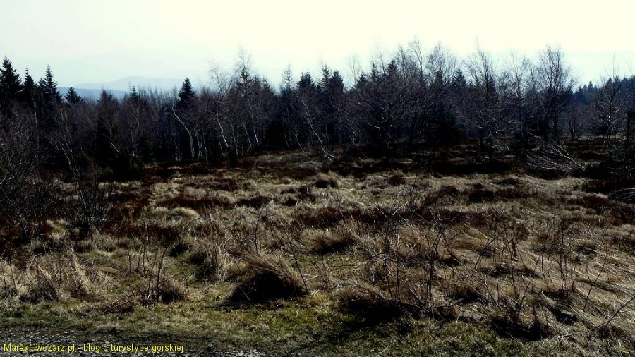 polana pod szczytem Leskowca