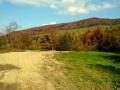 jesienny las nad Tyskową