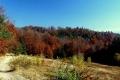gorczańska jesień jest piękna
