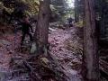 strome zejście z Lubonia na przełęcz Glisne