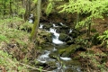 urokliwy pejzaż w rezerwacie dolinnym Mazak