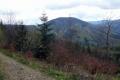 w stronę szczytu Kobylanka - 1053m