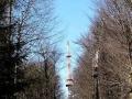 wieża na Magurze Stebnickiej