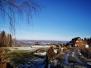 Miejska Góra - Szymbark
