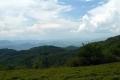 spojrzenie na Góry Leluchowskie