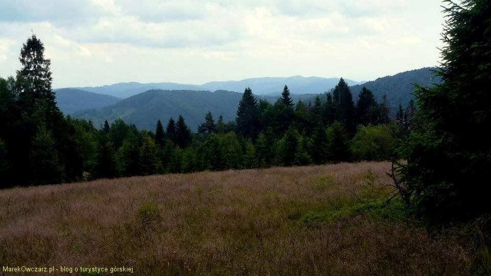 panorama Gór Czergowskich