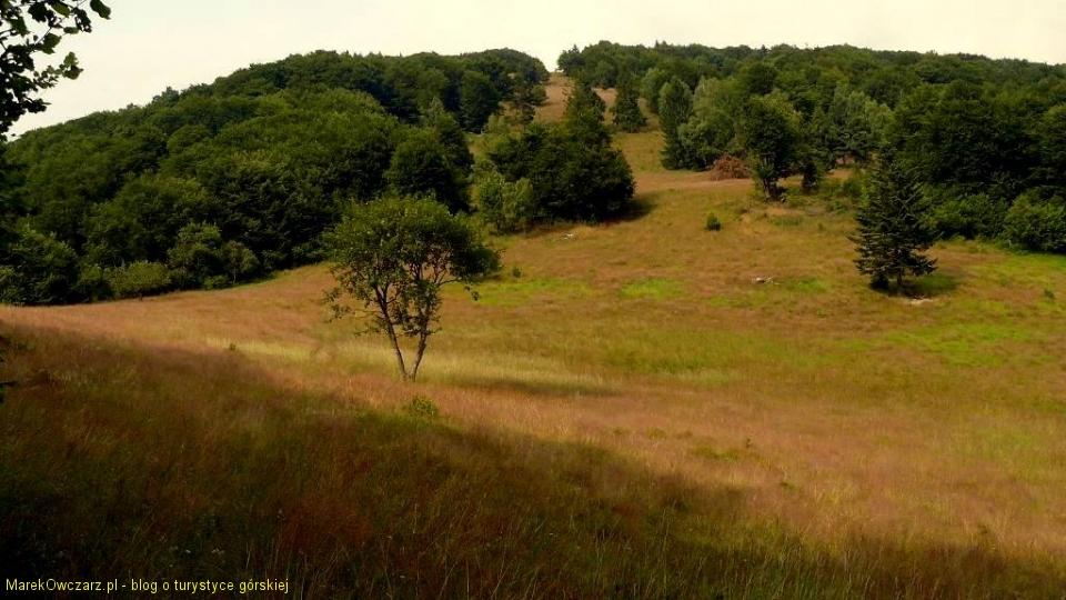 cudowna łąka pod szczytem Dvoriska
