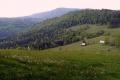 mogielica-jasien-098_1024_x_768