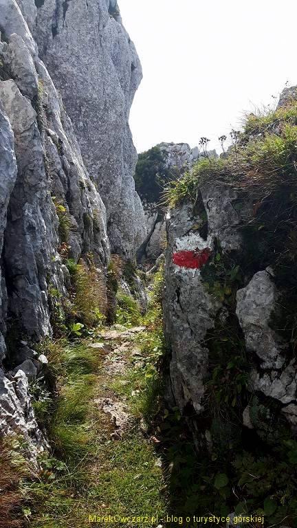 dolomity friulijskie (12)