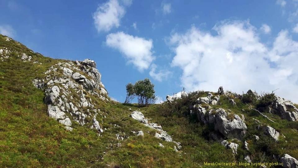 dolomity friulijskie (24)