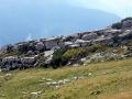dolomity friulijskie (1)