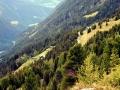 nord lehner grieskogel (50)