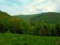sariska vrchovina (4)