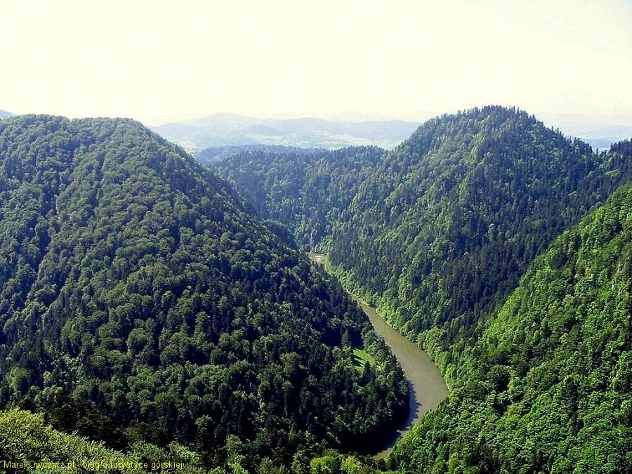 Dunajec widziany z Sokolicy